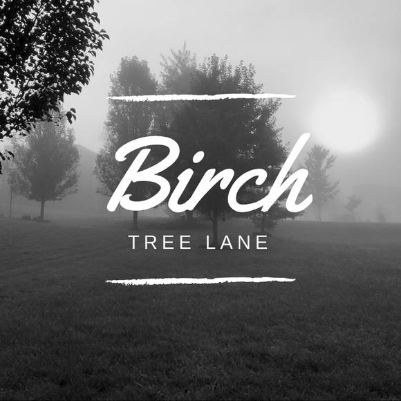 birch_tree_ln